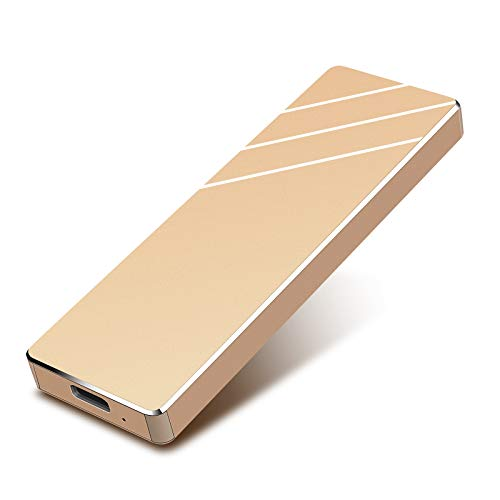 外付けHDD 1TB ハードディスク 1TB ポータブルハードディスク (Golden,1TB)