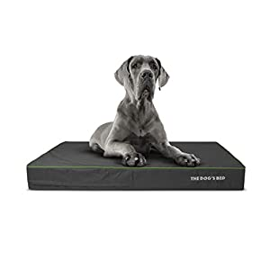 """Replacement Outer Cover ONLY (Outer Cover ONLY – NO Bed, NO Waterproof Inner) for The Dog's Bed, Washable Quality Oxford Fabric, XXL 54"""" x 36"""" x 6"""" (Grey with Dark Green Trim)"""