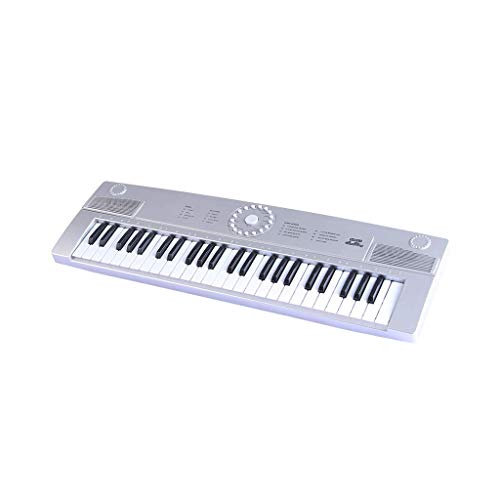 Best Buy! LIUFS-Piano Children's Keyboard 49-Key English Version of The Multi-Function Introduction ...