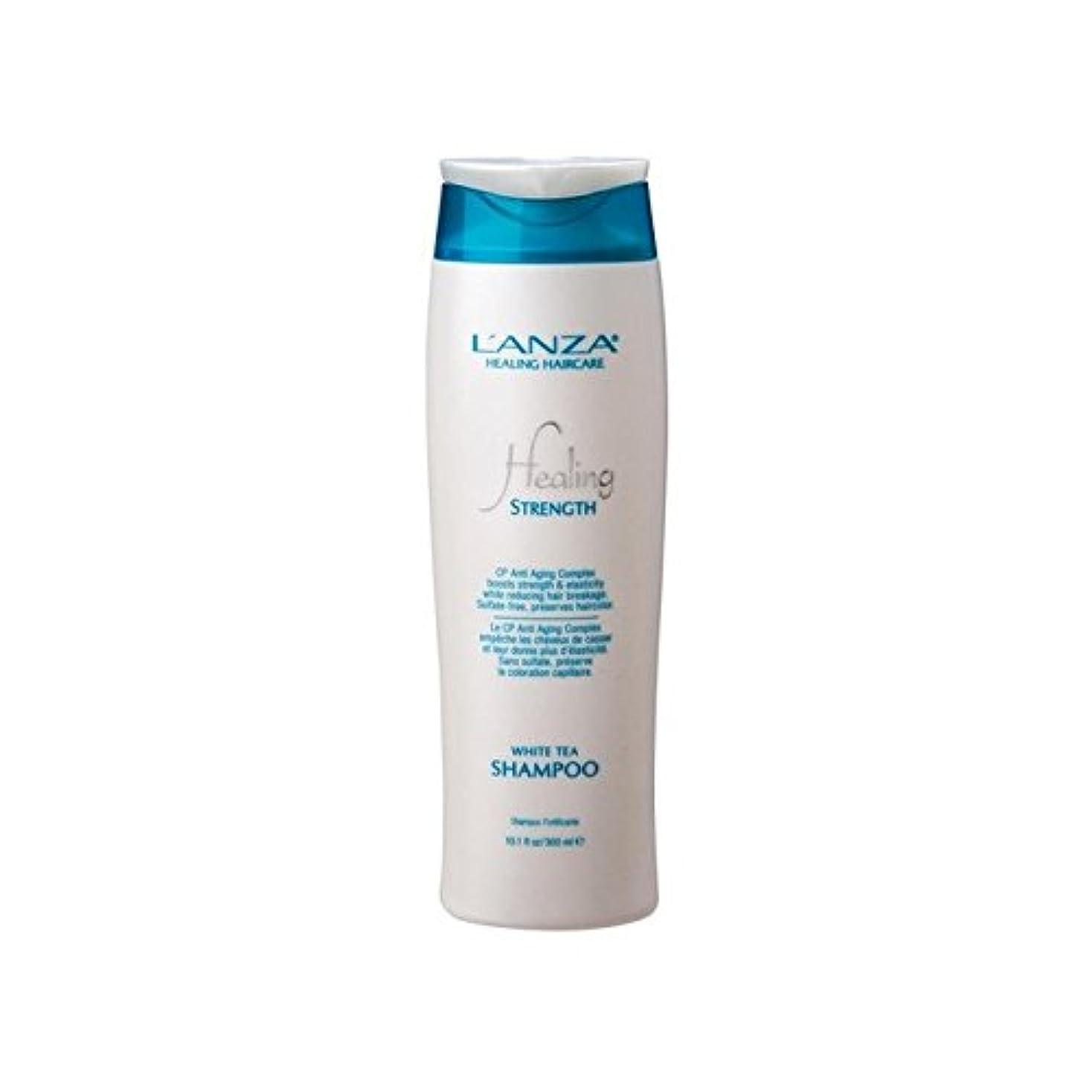 銅せせらぎ研究強ホワイトティーシャンプーを癒し'アンザ(300ミリリットル) x4 - L'Anza Healing Strength White Tea Shampoo (300ml) (Pack of 4) [並行輸入品]