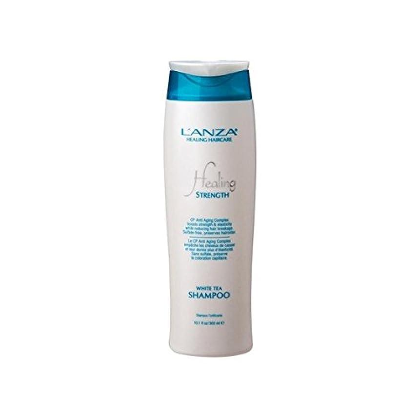 和解する分子ひまわりL'Anza Healing Strength White Tea Shampoo (300ml) (Pack of 6) - 強ホワイトティーシャンプーを癒し'アンザ(300ミリリットル) x6 [並行輸入品]
