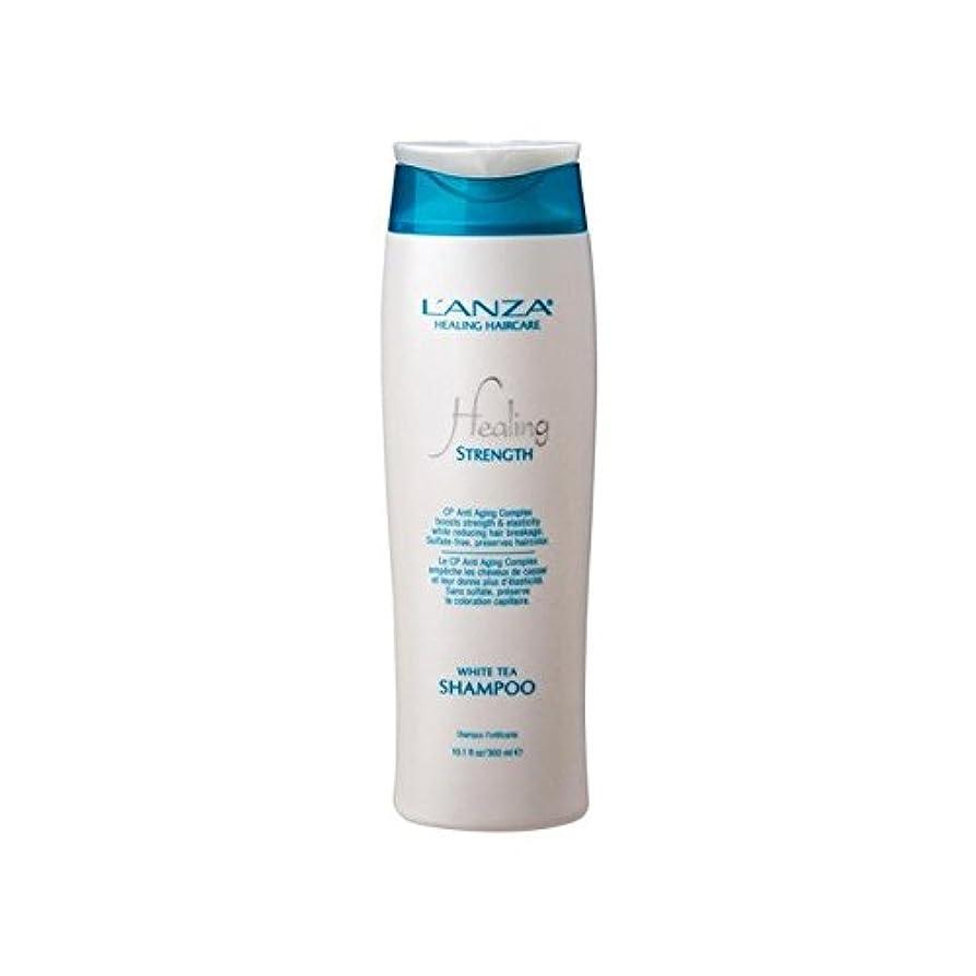 スナック欠員襟強ホワイトティーシャンプーを癒し'アンザ(300ミリリットル) x4 - L'Anza Healing Strength White Tea Shampoo (300ml) (Pack of 4) [並行輸入品]