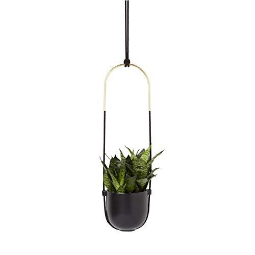 Umbra Bolo Blumenampel für Innen – Hängender Blumentopf für Anbringung an Wand und Decke, für Zimmerpflanzen, Sukkulenten, Luftpflanzen, Kakteen, Kunstpflanzen und Mehr, Keramik / Messing, Schwarz