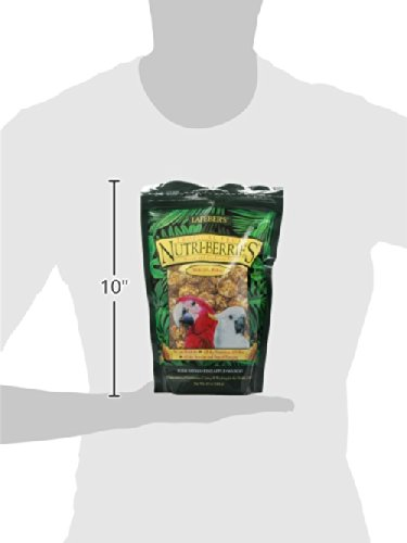 Lafeber Company Tropical Fruit Nutri-Berries For Macaws, 10-Ounce