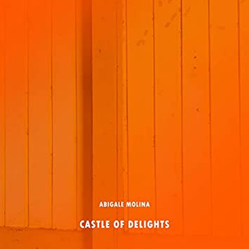 Castle Of Delights