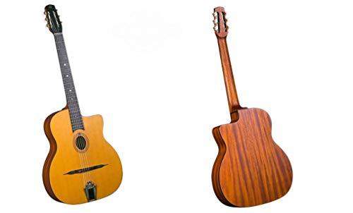 Gitane Guitare DG-255