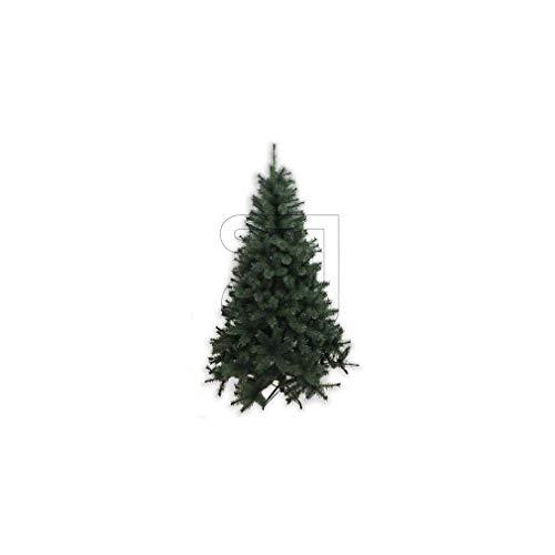 Unbekannt Weihnachtsbaum 'Schwarzkiefer' 150cm 18948 (9829868550)