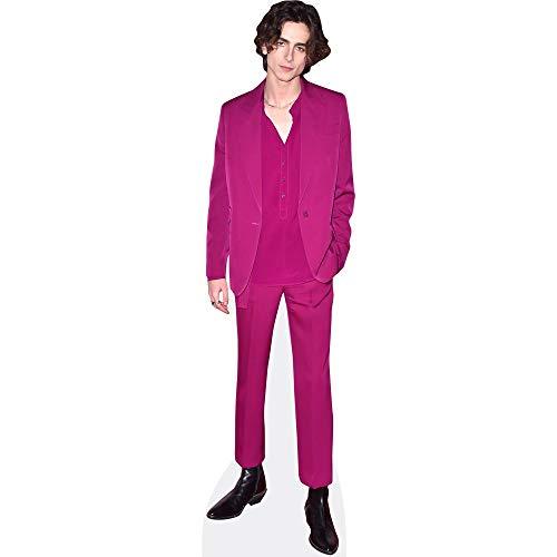 Timothee Chalamet (Purple Suit) Pappaufsteller lebensgross
