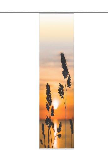 Home Fashion 87246-775 Schiebevorhang Digitaldruck Giraud, Deko, 245 x 60 cm, orange