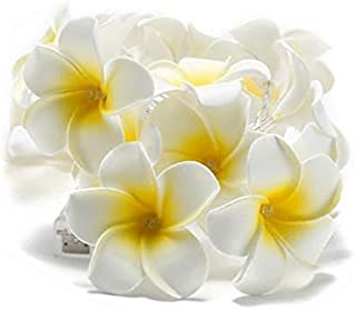20-LED String Light Hawaiian Foam Artificial Plumeria Flower Battery Powered Fairy Starry Lights