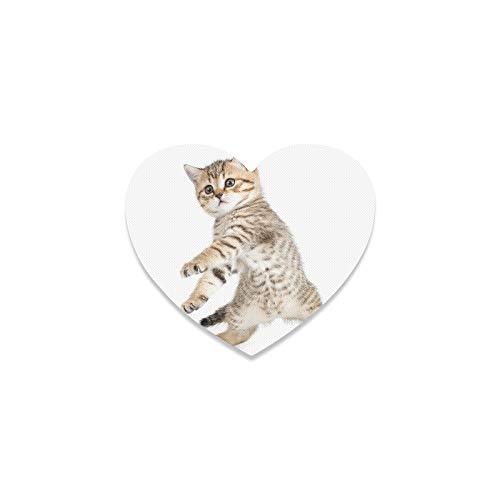 Posavasos de coche para hombre, diseño de gato bailando en el suelo blanco, ideal para decoración de apartamento, cocina, sala de bar