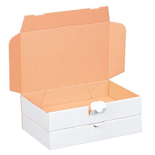 100 Maxibriefkartons 240 x 160 x 45 mm weiß (100 Stück) DIN A5 Maxibrief Versandkarton für DHL DPD GLS Hermes Warensendung Büchersendung mit Steckverschluss