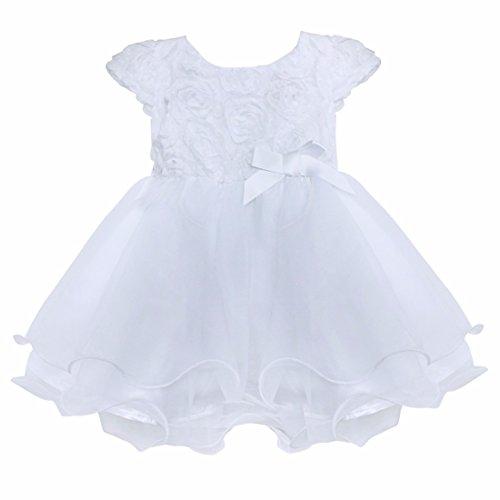 FEESHOW Infant Baby Girls' 3D Rose Flower Organza Party Wedding Christening Baptism Dress White 12-18 Months