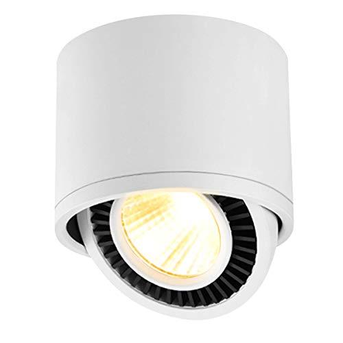 Budbuddy 15W LED Aufputz Spotleuchte schwenkbare DeckenLampe / 3000K COB Warmweiß LED Aufputz Deckenleuchte/Aluminium (Weiß)