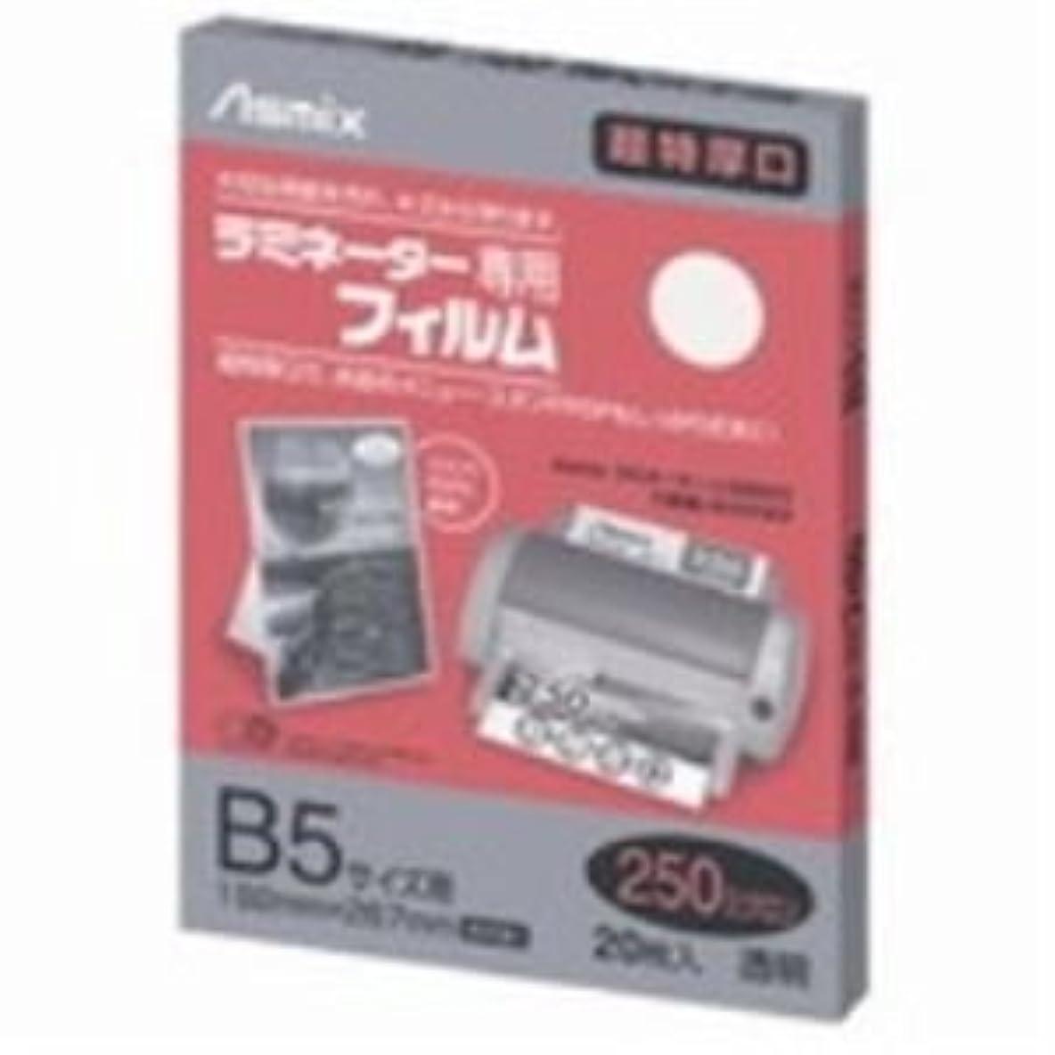 独特の単語はげ(業務用20セット) アスカ ラミネートフィルム250 BH091 B5 20枚