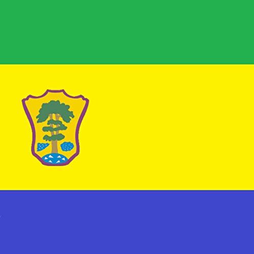 magFlags Bandera Large Versión de la Bandera Municipal de Campillo de Aranda   1.35m²   120x120cm