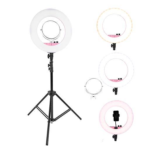 LED-ringlicht, metalen draagbare fotografie LED-ringlamp met statief, dimbare LED-verlichting voor macro-opnamen, persoonlijke fotografie en live show op zeer korte afstand(Roze 1)