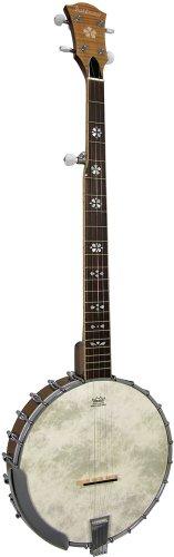 Ashbury AB-48 - Banjo de 5 cuerdas