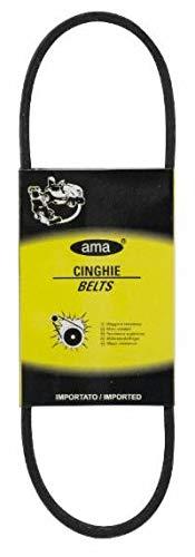 Ama Cinghia trapezoidale Liscia Z30 3/4-10X785 MM
