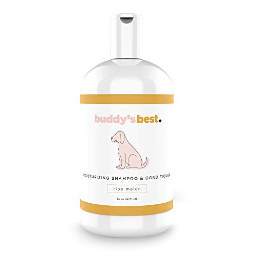 Buddy's Best Dog Shampoo for Smelly Dogs - Oatmeal Dog Shampoo and Conditioner for Dry and Sensitive Skin - Moisturizing Puppy Wash Shampoo, Ripe Melon Scent, 16oz