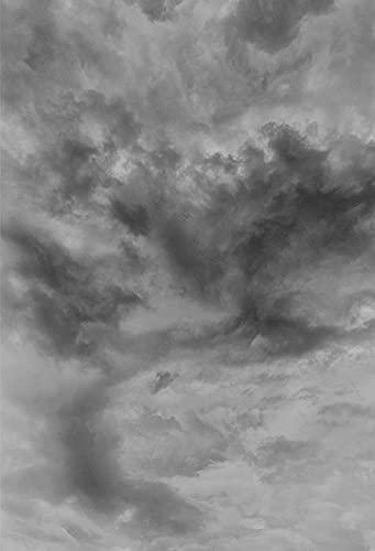 Fondo de fotografía Cielo Azul Nubes Blancas Recién Nacido Baby Shower Niños Niños Retrato Fiesta Foto Teléfono Estudio fotográfico A9 5x3ft   1.5x1m