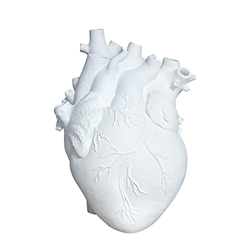 Jarrón de corazón, florero de corazón anatómico, florero decorativo de corazón, maceta creativa inferior de mesa, jarrón en forma de corazón, maceta de resina anatómica para el hogar Halloween