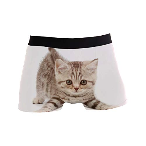 King Cat Men's Boxer Briefs Regular Soft Breathable Comfortable Underwear