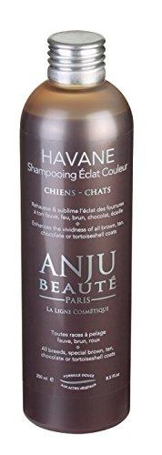 Shampooing Havane Anju Beauté - 2.5 L