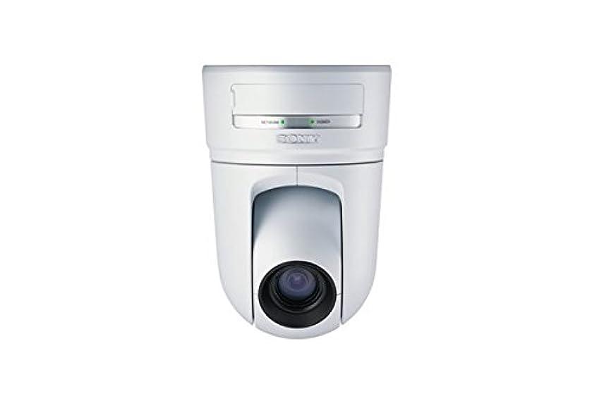 Sony SNC-RZ25N MPEG-4/JPEG Network Camera with PTZ Capability, 18x Zoom