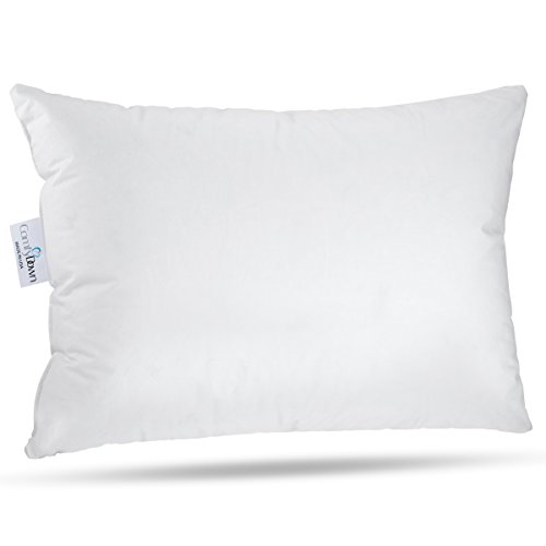 ComfyDown Travel Pillow - 800 Fill Power European Goose Down Pillow for Plane, Car & Home - 100%...