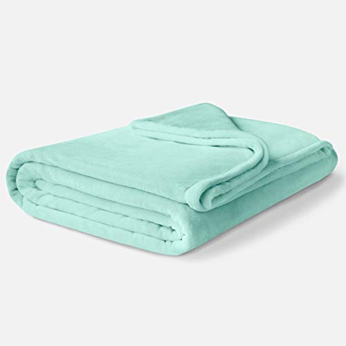 ViscoSoft - Manta de forro polar para invierno, tamaño doble, suave y felpa, diseño ligero, color verde menta