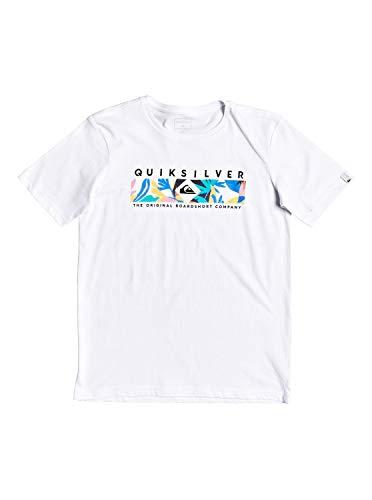 Quiksilver Distant Fortune-T-Shirt pour Garçon 8-16 Ans, White, FR : XL (Taille Fabricant : XL/16)