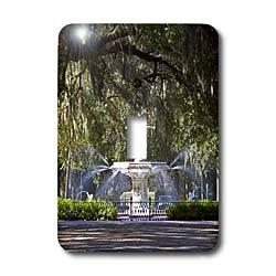 3dRose LLC lsp_89316_1 Water Fountain Forsyth Park Savannah Georgia Us11 Dfr0070 David R. Frazier Single Toggle Switch