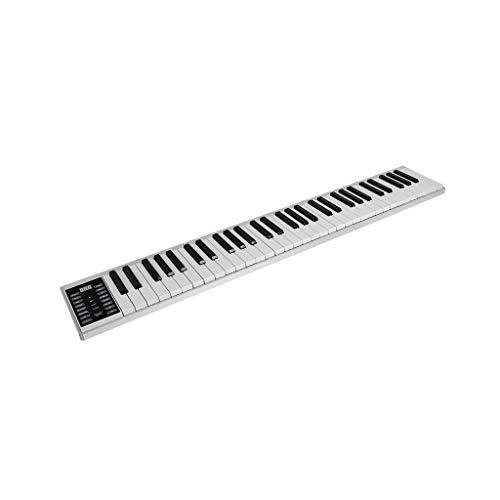 LIUFS-El teclado Portable Hand Roll Electronic Piano Versión Profesional Adultos Principiante Entrada Móvil Portátil (Tamaño : Standard style 61 keys)