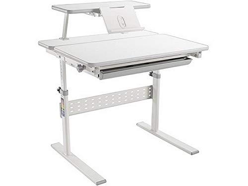 Ergodesk Small Study Desk Kinderschreibtisch höhenverstellbar Schülerschreibtisch Kindermöbel Schreibtisch Kinder grau weiß