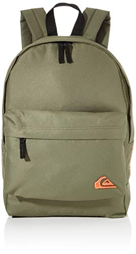 Quiksilver Men's Small Everyday Edition Backpack, Four Leaf Clover, Volume: 18L