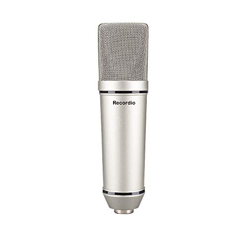 GAM-U87 Capsules Studio Sound Recording Condenser Microphone with Microphone Shock Mount Cardioid Condenser Studio XLR Microphone, Black, Ideal for Project/Home Studio Applications (Gray)