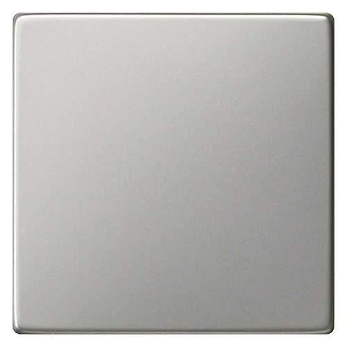 Gira Wippe 0296600 Edelstahl System 55 Abdeckung/Bedienelement für Installationsschalterprogramme 4010337021667
