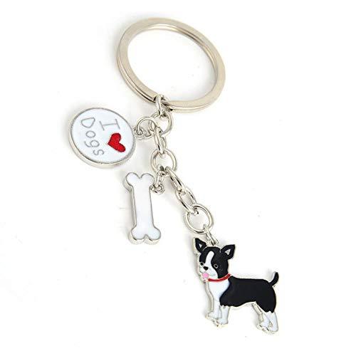 DioLm Pudel Teddy Hund Anhänger Schlüsselanhänger Für Frauen Männer Mädchen Silber Farbe Legierung Metall Schlüsselanhänger Auto SchlüsselbundCharmeSchlüsselring Schmuckstück, Chihuahua