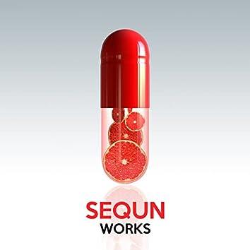 Sequn Works