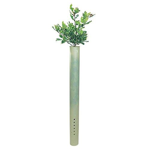 Tubex Ventex Clear, Wuchshülle, Baumschutz-Hülle zum Verbissschutz an lichtarmen Standorte, 1,2m, Ø 80-120mm (20)