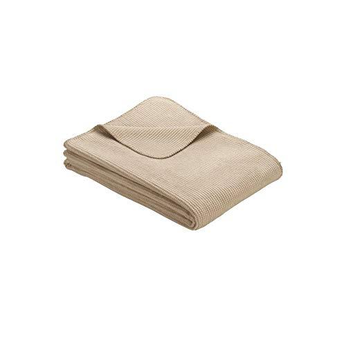 Ibena Imatra Babydecke 075x100 cm - Kuscheldecke beige, hochwertige Baumwollmischung, kuschelig weich und angenehm warm