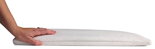 Home Luxury Living 2.5 Inch Ultra Thin Memory Foam Pillow Sleeper with 2 Pillow Covers