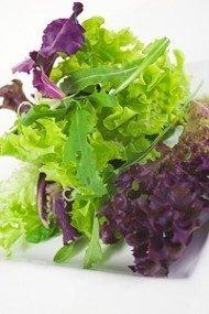 Lettuce - Gourmet LOOSELEAF Cutting Mix - 1500 Seeds