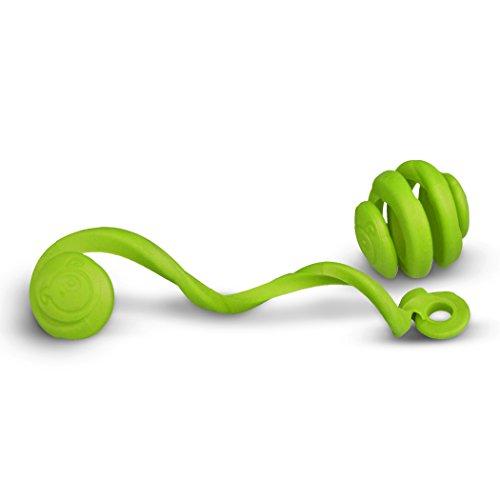 Boing Zigoo Pet Tug Dog Toy