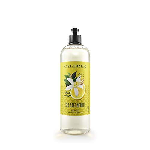 Caldrea Dish Soap, Biodegradable Dishwashing Liquid made with Soap Bark and Aloe Vera, Sea Salt Neroli Scent, 16 oz (Packaging May Vary)