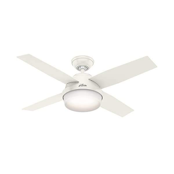 Hunter Fan Company 59246 44″ Indoor Dempsey Ceiling Fan with Light, White