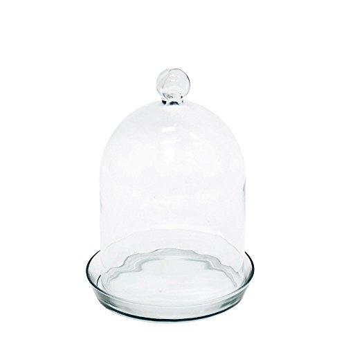 Achla Designs Bell Jar Terrarium I