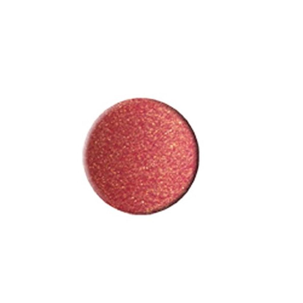 エジプト人迫害ホステス(6 Pack) KLEANCOLOR Everlasting Lipstick - Iced Pink (並行輸入品)