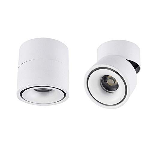 Hobaca Dia 10 * H10cm 12w Focos montados en superficie LED Puntos de techo 360 ° Mini foco ajustable Concha de aluminio Luz de cocina Downlight - Blanco blanco cálido (Blanco)